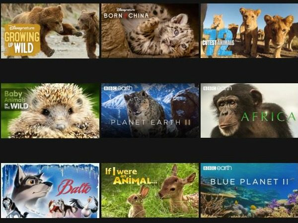 animal movies on Netflix