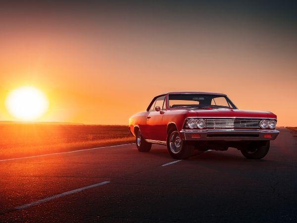 5 of the Best Movies Starring Mustangs